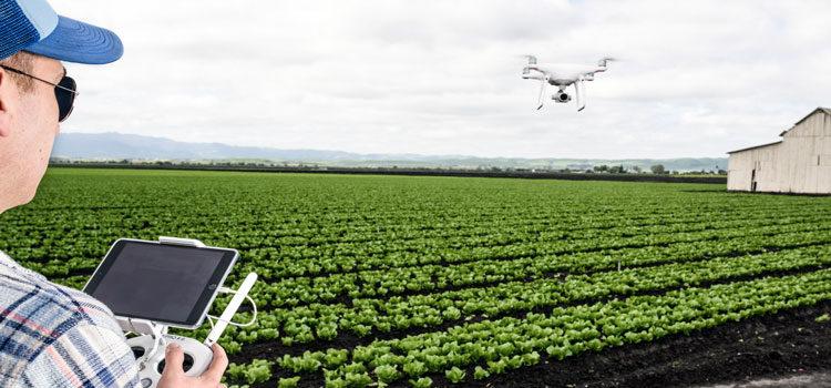 اینترنت اشیا در کشاورزی