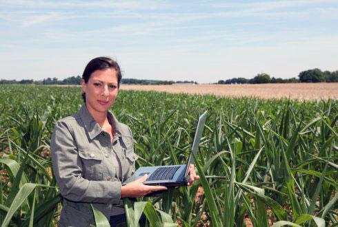 زن کشاورزی که با اینترنت اشیا به محصولات خود می رسد.