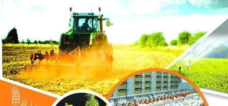 آشنایی فعالان بخش کشاورزی و چهرههای استارتاپی