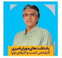 مهران امیری, کارشناس کسب و کارهای نوپا