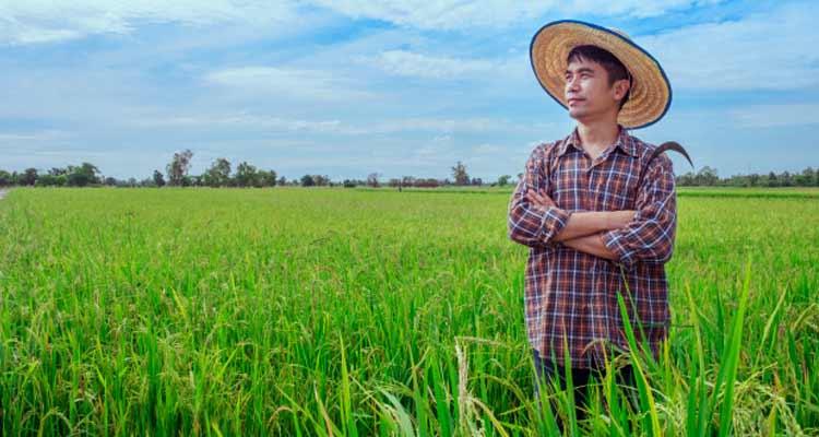 بلاکچین و کشاورزی